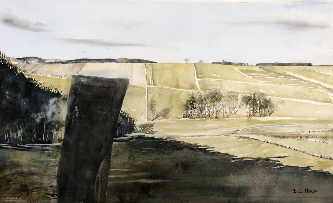 The Ardennes near Bastogne